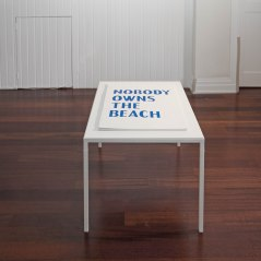 20 NOTB BLUE RUIN, David Horvitz, Nobody Owns The Beach, 2017