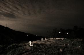 Beast_Sculpture Garden Night